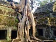 Cambodja14