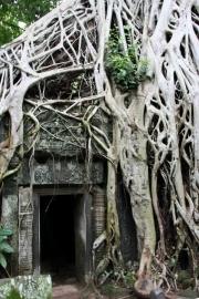Cambodja23
