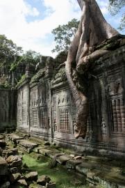 Cambodja33