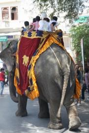 India52