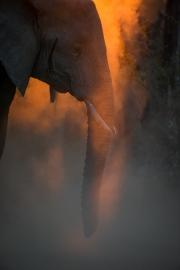 Zambia21